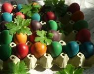 Eggs+geranium