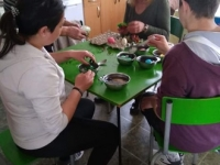 Dupnitsa - coloring eggs with the babas