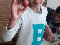 Dupnitsa - black girl = egg 1