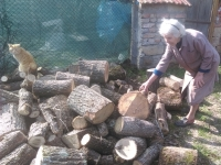Baba+wood