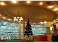 Christmas Tree Park Inn by Radisson Sofia-1