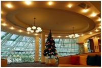 Christmas-Tree-Park-Inn-by-Radisson-Sofia-11